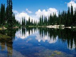 balsam-lake--mount-revelstoke-national-park--british-columbia--canada