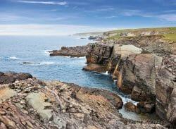 Мыс Мистейкен Пойнт (Mistaken Point ) на острове Ньюфаундленд был признан комиссией ЮНЕСКО регионом мирового наследия. Решение было принято на 40-й сессии Комитета всемирного наследия ЮНЕСКО, которая завершилась 17 июля в Стамбуле.
