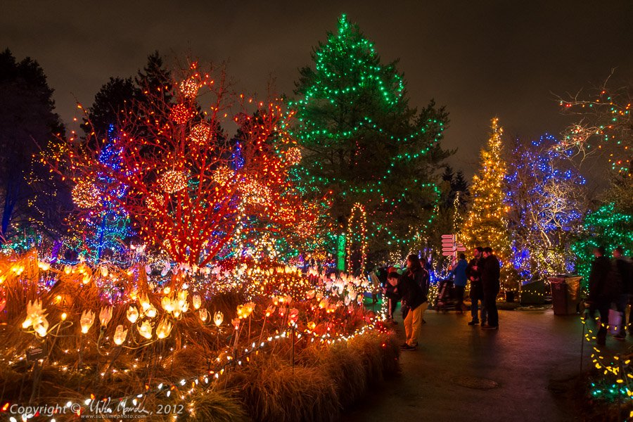festival of Lights at VanDusen Gardens, фестиваль света в Ванкувере, Канада, Рождество,нашванкувер