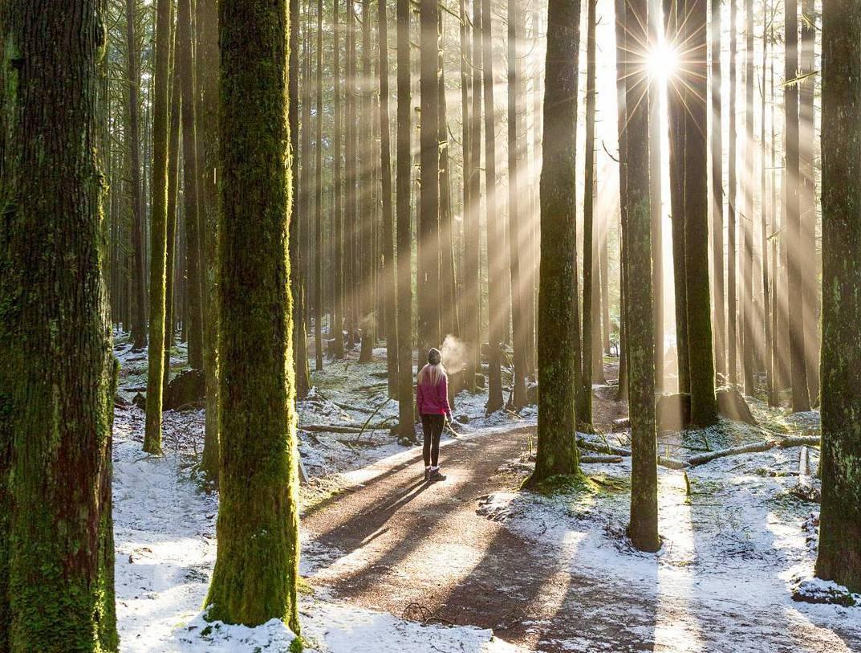 Golden Ears Provincial Park,национальный парк Канада,зимний хайкинг Канада,НашВанкувер, посетить в Канаде