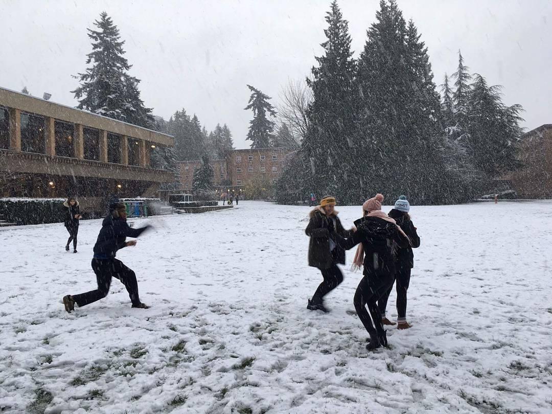 первый снег Ванкувер