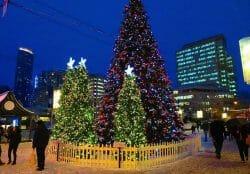 Robson Square, рождество в Ванкувере, главная елка Ванкувера