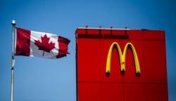 канадский макдональдс, Канада, аллергия, орехи