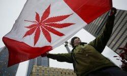 в Канаде легализуют марихуану до июля 2018 года, до Дня Канады