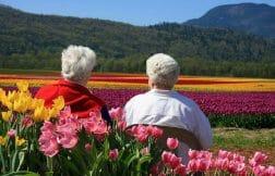 лучшие города для жизни на пенсии
