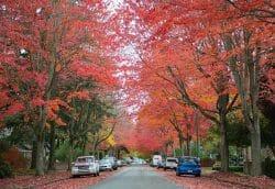 Ванкувер осенью