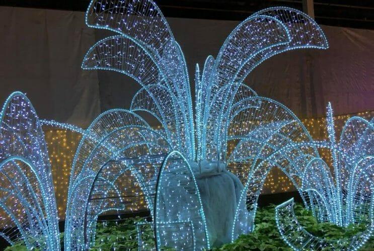 glow световое шоу в Ванкувере