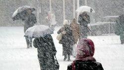 снежный шторм Канада