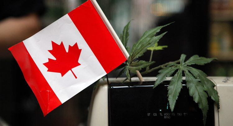 правила употребления марихуаны в Канаде